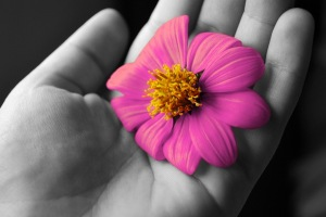 ruka-kvetina