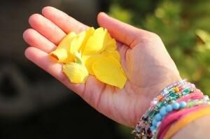nabidnute-okvetni-listky